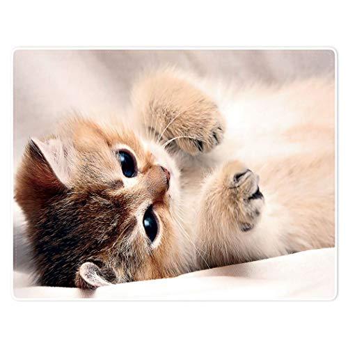 YISUMEI Tiermotiv Kuscheldecke Süße Katze Weich Bequem Kunstfell Decke Kuscheldecken für Couch Bett L,125 x 150 cm