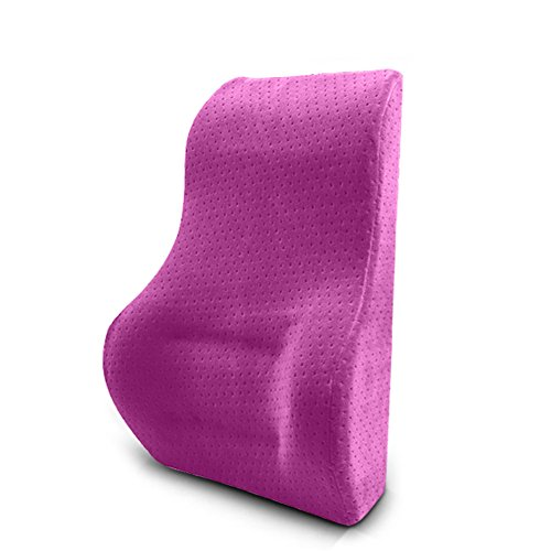 Cushins Lumbar Support Pillow Back Cushion Memory Foam Cushion Ergonomic Back Support Pillow Best Lower Back Support Pillow Cushion Orthopedic Bamboo GAOFENG (Color : Purple)