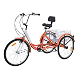 Barbella Adult Tricycle, 24-Inch Single and 7 Speed Three-Wheeled Cruise Bike with Large Size Basket for Recreation, Shopping, Exercise Men's Women's Bike (7 Speed Orange)