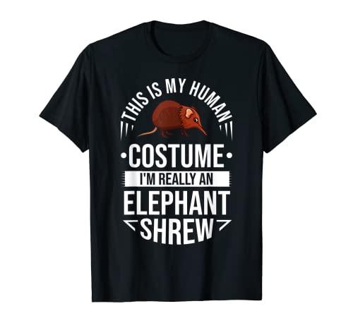 Elefante de la musaraña regalo Sengi lindo ratón de salto Camiseta