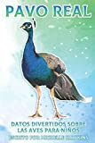 Pavo real: Datos divertidos sobre las aves para niños #19