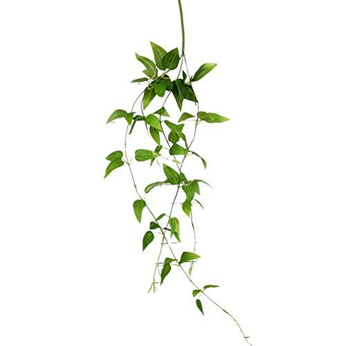 sudalv1971 1 Stück Künstliche Ivy Vine Plant Green Leaf Pflanze Hochzeit Home Wall Party Hausgarten Hängen Dekor Weihnachtsgeschenk Abrus Precatorius