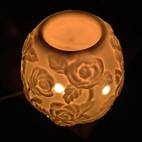 Royal Premium en céramique Diffuseur Électrique avec variateur d'intensité/Lampe de Nuit – 12,7 cm, diamètre de 5 Inc : Gratuit 1 Ampoule et 1 flacons d'huile Essentielle