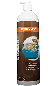 LUCAA+ Shampoing pour Chiens et Chats aux Probiotiques | Bio | Vegan | Naturel