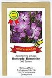Kornrade - Kornnelke - Bienenweide - bedrohte Art -...