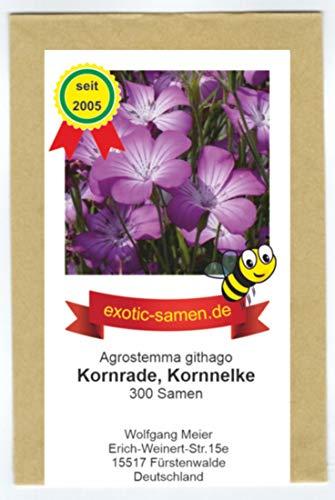 Kornrade - Kornnelke - Bienenweide - bedrohte Art - Blume des Jahres 2003 - Kaltkeimer - 300 Samen