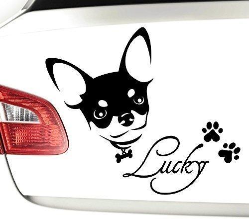 Grandora X7050 Autoaufkleber Chihuahua mit Wunschnamen + Pfoten schwarz matt