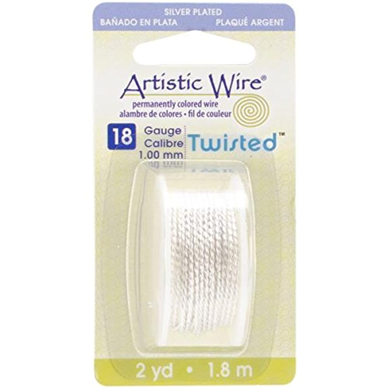 Beadalon AWD18TS1 18 Gauge Twisted Round-Non-Tarnish Artistic Wire, 2-Yard, Silver