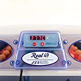 Borotto Automatic REAL 49 - Patented professional incubator, with automatic egg turning - for 49 normal-sized eggs or 196 small-sized eggs