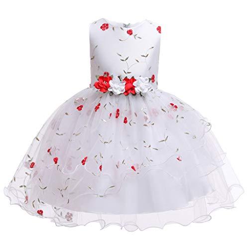 AIOJY Blumen-Kinderkleid Stickerei Prinzessin Kleid Chiffon für Kinder Mädchen, Sommer,160cm