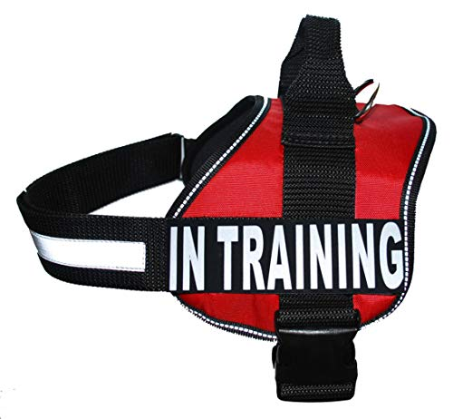 Service Dog Harness Vest Cool Comfort Nylon for Dogs Small Medium Large Girth, Purchase Comes with 2 in Training Reflective Patches. Please Measure Dog Before Ordering (Girth 19-25', Red)