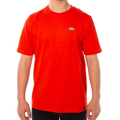 Dickies T-shirt Stockdale pour homme - Orange - L
