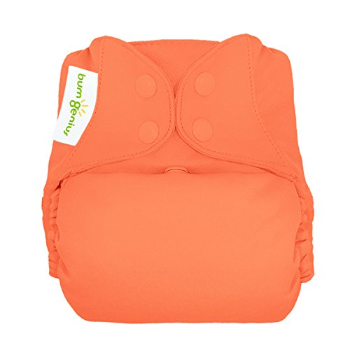 bumGenius Freetime All-in-One One-Size Snap Closure Cloth Diaper (Kiss)