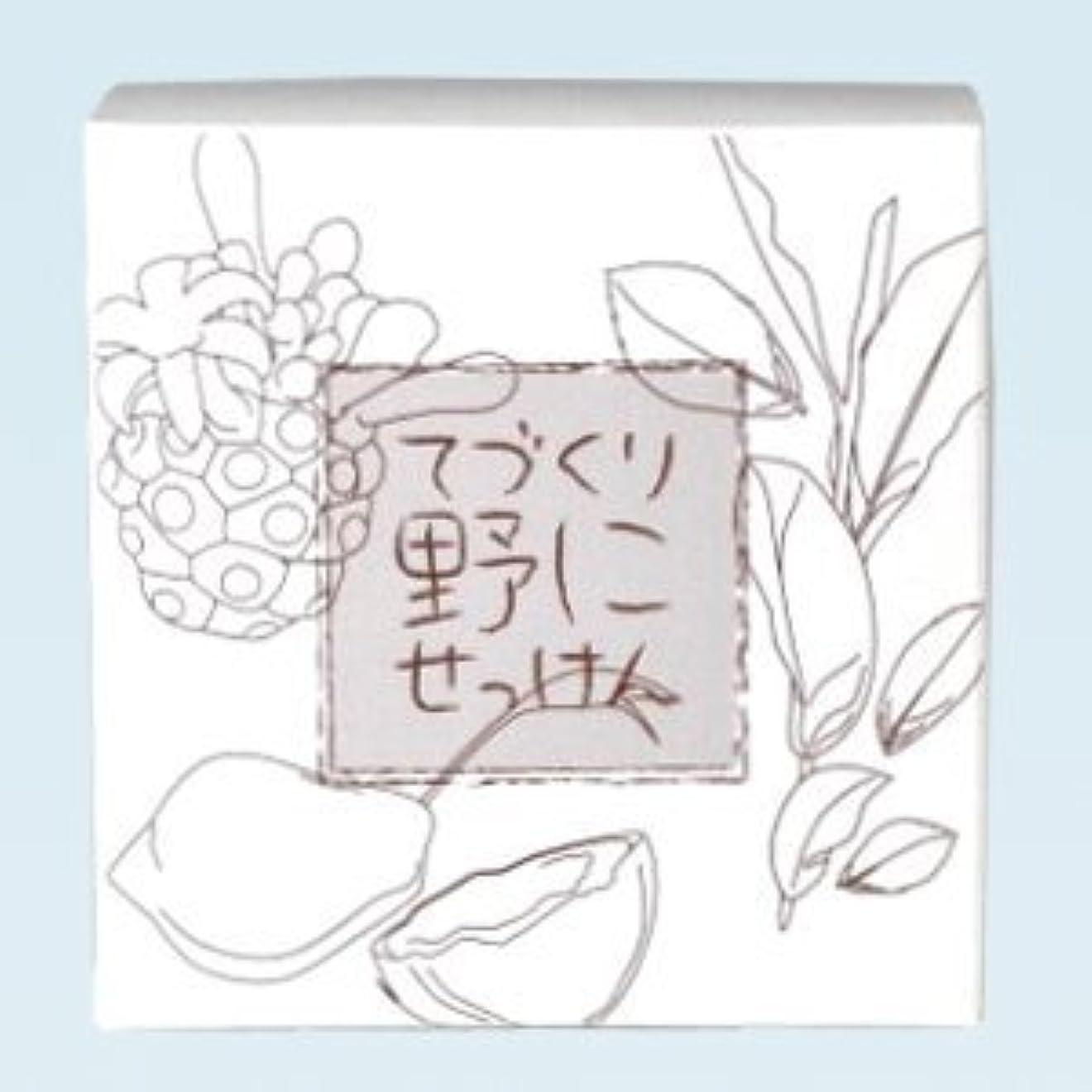 傾向があります選択するあいにく緑茶 ノニ石鹸 てづくり野にせっけん(115g)