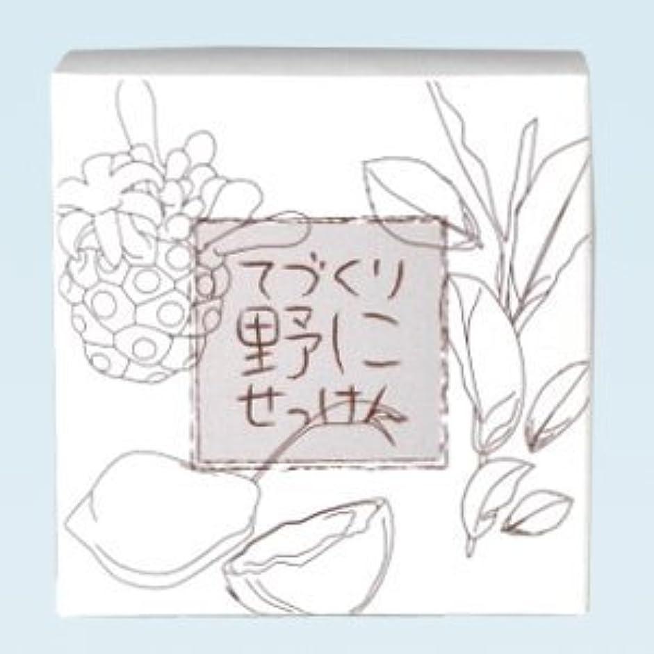 むちゃくちゃパイプライン侵略緑茶 ノニ石鹸 てづくり野にせっけん(115g)