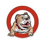 WANGXIU Dibujos Animados Linda Mascota Pegatinas de Perro Maleta para Parachoques Skateboard Pegatinas Decorativas (13 *...