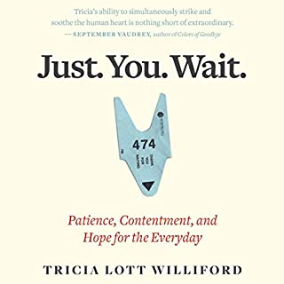 Just. You. Wait. audiobook cover art
