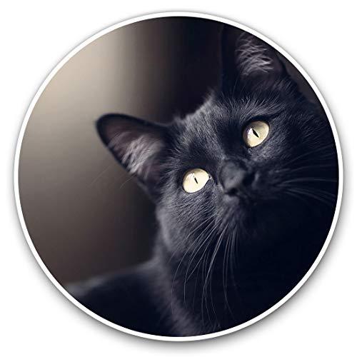 2603 - Pegatinas de vinilo (2 unidades, 10 cm), diseño de gato negro
