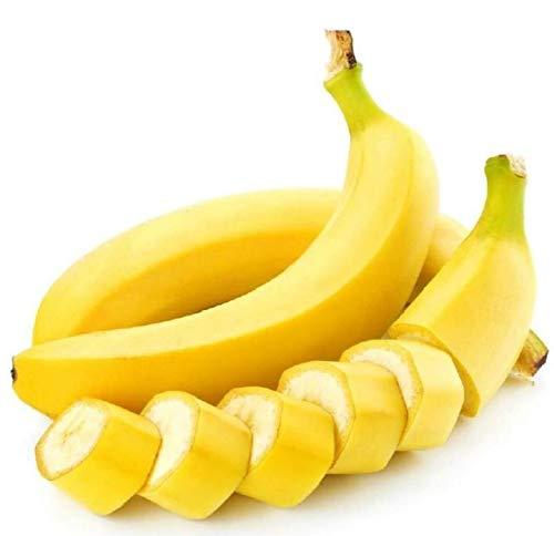 Shopmeeko 50 Pcs Très Rare Arc-En-Banane Bonsaï En Plein Air Vivace Plantes Intéressantes Lait Goût Délicieux Fruits Bonsaï Pour La Maison & amp; Jardin: blanc