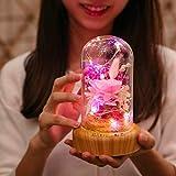 XIAOXINYUAN D4Música Micro Paisaje Flor USB Recargable Sleep Night Light Protección para Los Ojos Led Lámpara De Mesa De Noche Decoración Rosa