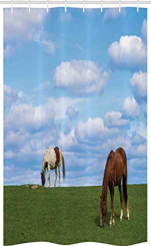 ABAKUHAUS Minnesota Douchegordijn, Paarden die Meadow, voor Douchecabine Stoffen Badkamer Decoratie Set met Ophangringen, 120 x 180 cm, Veelkleurig