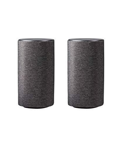 Loewe Klang 1 Graphitgrau (passiver Lautsprecher mit 60 Watt Musikleistung)