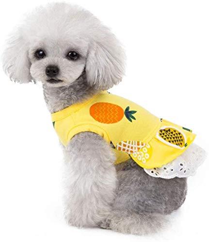 XIRUN Huisdier Kleding Zomer Hond Prinses Jurk Katoen Ananas Rok Party Kostuum voor Puppy Kleine Honden XS Geel, XS, Geel