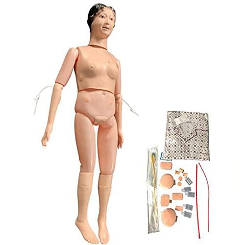 DMZH Multifuncional Simulador Atención Al Paciente Maniquíes Enfermería Primeros Auxilios Trauma Maniquí, Suministros De Educación De Capacitación De Enfermería