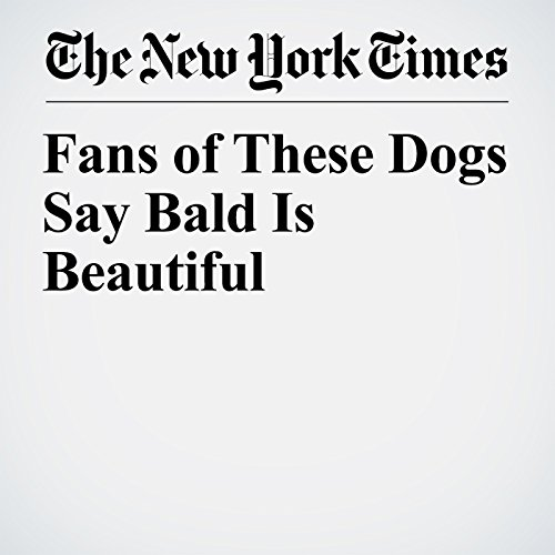 Fans of These Dogs Say Bald Is Beautiful copertina