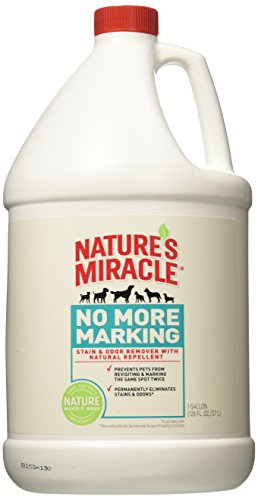 Nature's Miracle...