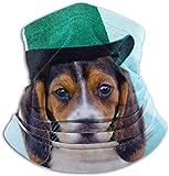 Lsjuee pasamontañas, pañuelo, polaina, media, sombreros resistentes, bufanda de tubo, cachorro beagle tricolor con purpurina verde, calentador de cuello suave, pasamontañas, capucha para mot