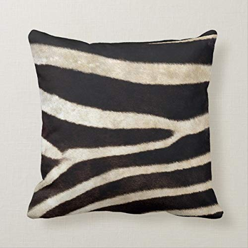 Yilooom 18 X 18 Inch Square Throw Pillow Cases Cushion Covers For Bed Sofa Couch Car Home Decor, African Zebra Print Design Throw Pillow Cover