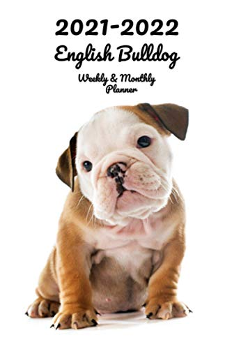 2021-2022 English Bulldog Weekly & Monthly Planner: 2-Year Pocket Calendar | 26 Months | 152 pages 6x9 in. | Diary | Organizer | Agenda | Appointment | For Dog Lovers