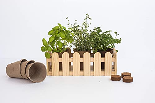Uncle Ralph Huerto Urbano Kit Cultivo Hierbas aromáticas con Jardinera de Madera. Macetero jardín para Plantas y Flores. Growing Kit Siembra (Natural)
