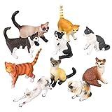 FLORMOON Figure Animali realistiche 10 Pezzi Cat Model Figurine Include Gatto Bianco Nero Gatto Birman eccetera. Giocattoli educativi per l'apprendimento Set Regalo di Compleanno per Bambini Piccoli