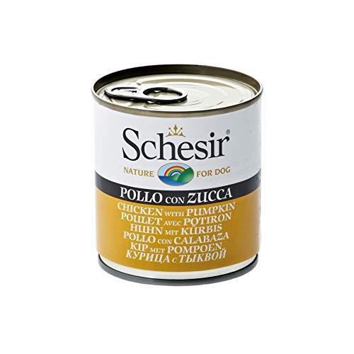 Schesir, Cibo Umido per Cani Adulti al Gusto Pollo con Zucca, Filetti in Morbida Gelatina - Totale 4,56 Kg (16 Lattine da 285G)