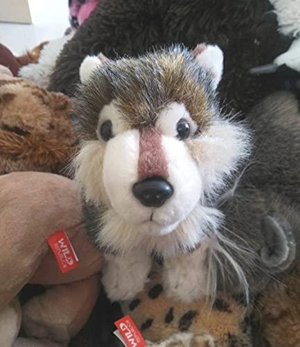 NC277 Simulation small gray wolf plush toy doll