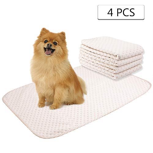 Yangbaga Tappetini di Addestramento, Traverse Cani Lavabile - Pannolini Puppy per Fare i Bisogni 4pc (50 * 70cm)