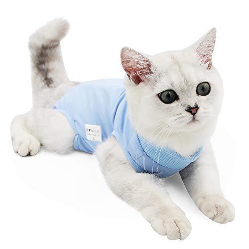 MIECNATG Katzen Beitrag Chirurgie Wear Bauchwunden Haut-Krankheit Chirurgie Recovery-Weste-Klage Regard E-Halsband-Alternative für Katzen und Hunde nach Operationen (L, blau)