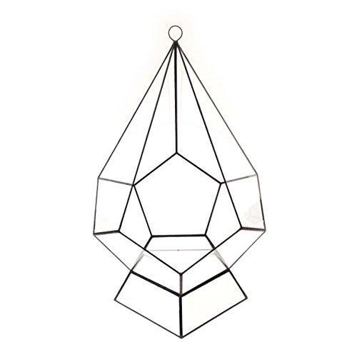 Goutte d'Eau Mega taille avec support – Terrarium en verre géométrique moderne/fleurs/intérieur Indoor/Fait à la main, Verre, Black Patina, 30x30x45