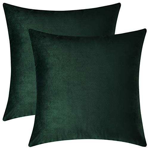 Mixhug Set of 2 Cozy Velvet Square Decorative Throw Pillow Covers for Couch and Bed, Dark Green, 18 x 18 Inches