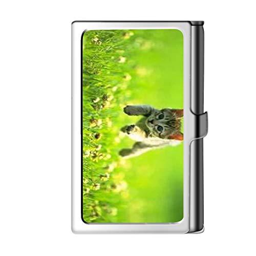 Porta tarjeta de visita con diseño, caja de crédito con nombre de cartera de acero inoxidable para hombres y mujeres-Cat