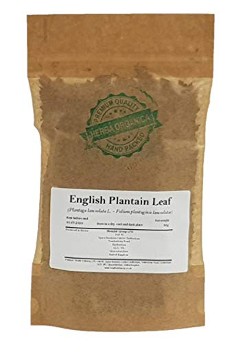 Herba Organica Smalle Weegbree Blad - Plantago Lanceolata L / English Plantain Leaf (50g)