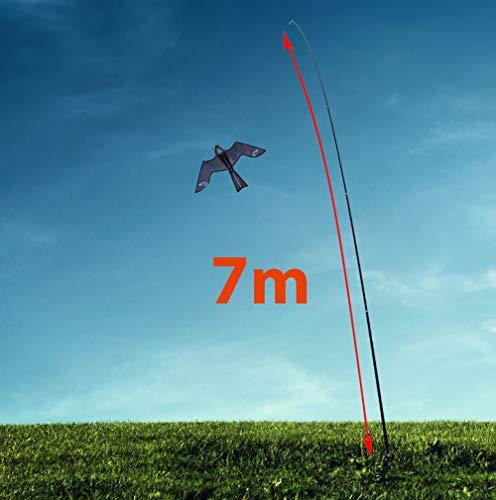 Birdbusters 7m Glasfaser-Teleskopstab Vogelabwehr-Drachen - Greifvogel-Attrappe gegen Tauben, Krähen, Raben & andere Vögel - Ideal als Vogelscheuche für Garten & Acker - Spannweite 1,40 m.