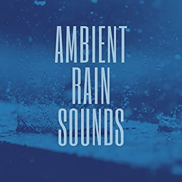 Ambient Rain Sounds