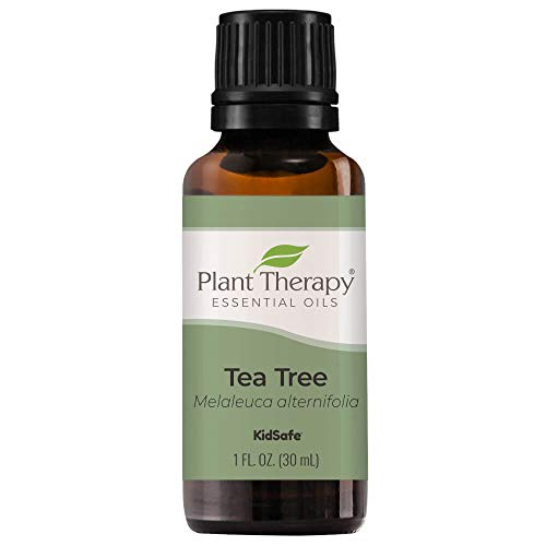 Plant Therapy Tea Tree Essential Oil 100% Pure, Undiluted, Natural Aromatherapy, Therapeutic Grade 30 mL (1 oz)