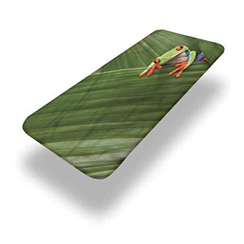 LCGGDB Mantel ajustable de poliéster con diseño de rana exótica de Costa Rica con bordes elásticos, 91,4 x 243,8 cm, para camping, comedor, al aire libre, parque, patio