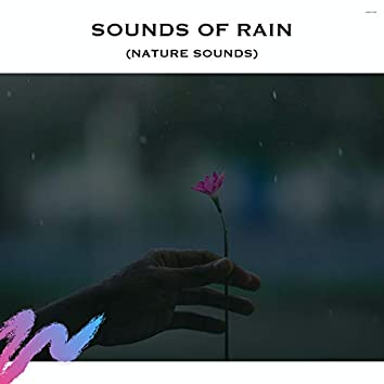 Sounds of Rain (Nature Sounds)