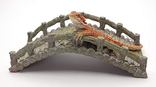 Beardedd Dragon Bridge Accessory By Carolina Custom Cages