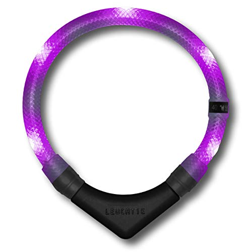 LEUCHTIE® Leuchthalsband Premium Lavendel Größe 42,5 I LED Halsband für Hunde I konstante Leuchtkraft I wasserdicht I extrem hell